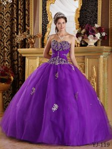 2013 Memorable Appliqued Tulle Lace-up Sweet 16 Dresses in Eggplant Purple