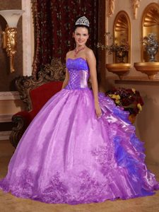 Magnificent Strapless Long Organza Dress for Quinceaneras in Purple
