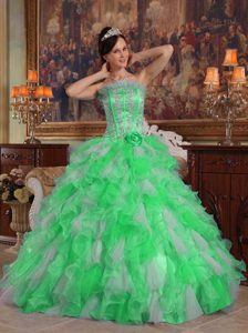 Green Strapless Long Gorgeous Quinceaneras Dresses with Appliques