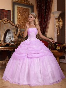 Fashionable Strapless Long Organza Sweet Sixteen Dress in Lavender