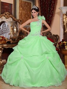 Popular Light Green One Shoulder Long Quinceanera Gowns with Appliques