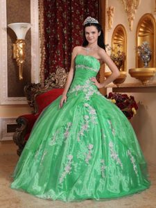 Strapless Spring Green Long Organza Quinceanera Dresses with Appliques