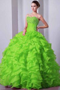Princess Green A-line Sweetheart Organza Beading Sweet Sixteen Quinces Dress