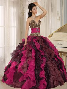 Nice Multi-color V-neck Dress for a Quince in Organza and Leopard with Beads