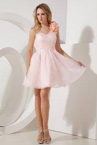 Baby Pink A-line Graduation Ceremony Dresses with Handmade Flower in Organza