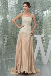 Brush Pleated Champagne Chiffon Provocative Dresses for Holiday Sequin Accent