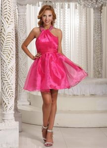 Halter Top Hot Pink 2013 Luxurious Homecoming Dance Dresses for Summer