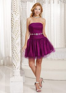 Impressive Purple A-line Lace-up Tulle Vintage Homecoming Dress for Spring