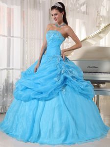 Baby Blue Ball Gown Strapless Quinceanera Dress in Organza with Appliques