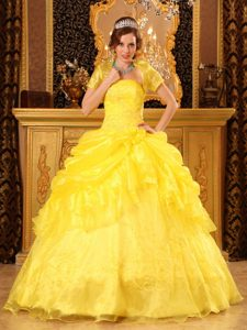 Yellow Ball Gown Strapless Quinceanera Dresses in Organza with Appliques