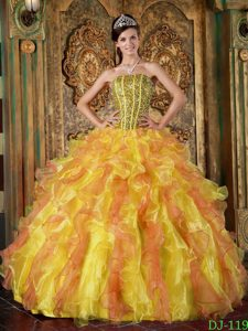 Multi-Color Ball Gown Strapless Ruffled Quinceanera Formal Dress in Organza