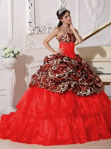 Red Ball Gown Appliqued Quinceanera Dress Made in Leopard and Organza