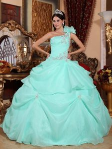 Apple Green Single Shoulder Quinceanera Dresses with Appliques in Organza