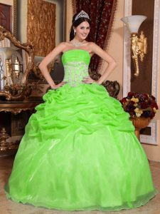 Spring Green Strapless Organza Dress for Quince with Pick Ups and Appliques