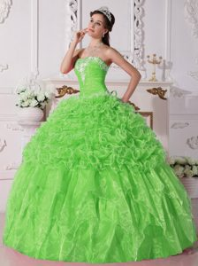 Latest Ball Gown Strapless Organza Dresses for Quince with Rolling Flowers