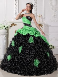 Green and Black Ball Gown Organza Quinceanera Dress with Rolling Flowers