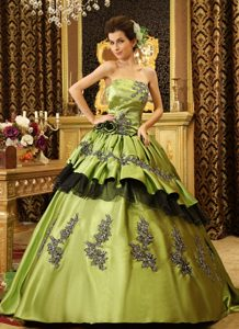 Great Olive Green Strapless Court Train Sweet 16 Dresses with Appliques