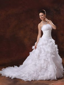 Perfect 2013 Appliqued and Ruffled Organza Bridal Gown with Chapel Train