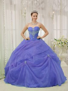 Magnificent Sweetheart Long Organza Quinceanera Dresses in Purple