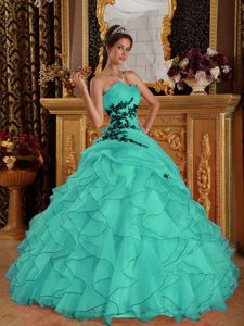 Dazzling Sweetheart Quinceaneras Dresses in Organza with Appliques in Turquoise