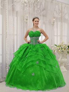 Floating Strapless Organza Beading Quinceanera Gown Dresses in Spring Green