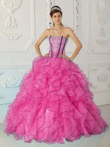 Noble Pink Ball Gown Strapless Quinceaneras Dresses in Organza with Appliques
