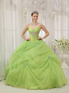Discount Yellow Green Sweetheart Organza Quinceanera Dress with Appliques