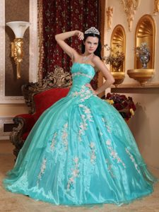 Turquoise Strapless Ruched Organza Quinceanera Dress with Appliques on Sale