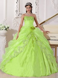 Yellow Green Strapless Organza Quinceanera Dress with Pick-ups and Flower