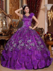 New V-neck Straps Ball Gown Quinceanera Dress with Appliques and Flowers