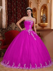 Fuchsia Strapless Ball Gown Quinceanera Dress with Appliques on Promotion