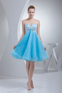 Romantic Sweetheart Appliqued Aqua Organza Pageant Dresses for Toddlers
