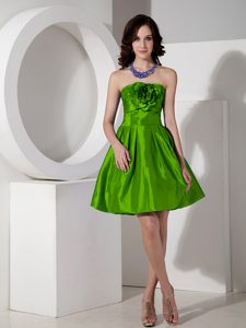 Modest Spring Green A-line Strapless Party Dress in with Hand Flowers