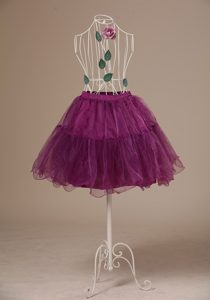 Hot Selling Fushsia Mini-length Petticoat