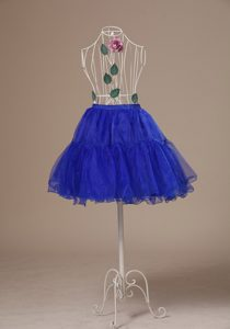 Custom Made 2013 Peacock Blue Petticoat