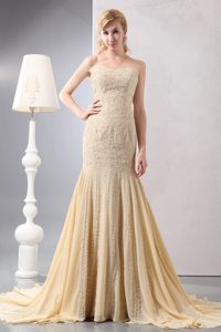Champagne Strapless Court Train Chiffon Prom Evening Dress with Appliques