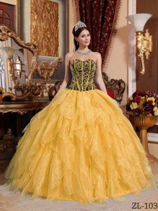 Pretty Colorful Sweetheart Organza Beaded Quinceanera Dress with Embroidery
