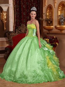 Clearance Organza Sweet 16 Dresses in Spring Green and Yellow with Ruffles