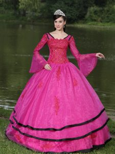 The Most Popular Appliqued Sweet 16 Dresses with Long Sleeves and Layers