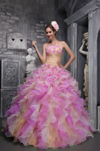 Lovely Strapless Quinceanera Dresses with Flowers and Ruffles in Multi-color