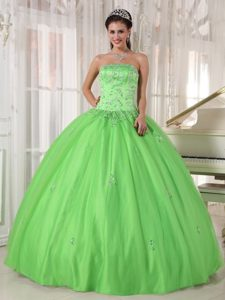 Ball Gown Floral Appliques Strapless Quinceanera Dresses in Spring Green