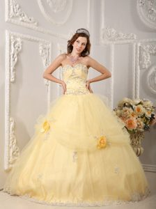 Applique Handmade Flowers Organza Light Yellow Chic Quinceanera Gown