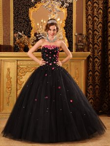 New Style Ball Gown Strapless Black Quinceanera Gowns with Appliques