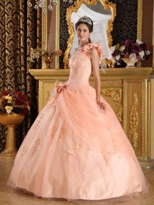 Light Pink Sassy One Shoulder Tulle Champagne Quinceanera Dress with Appliques
