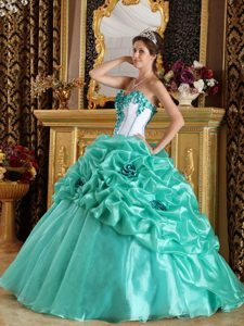 Princess Apple Green Sweetheart Sweet Sixteen Quinceaneras Dresses in Organza