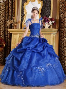 Best Blue Ball Gown Spaghetti Straps Appliqued Quinceaneras Dresses in Organza
