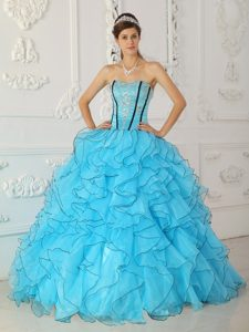 Iconic Baby Blue Quinceaneras Dresses in Organza with Appliques to Long