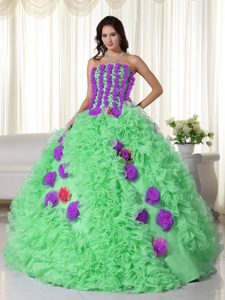Righteous Green Ball Gown Strapless Organza Quince Dress with Colorful Flowers