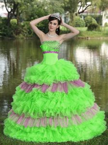 Beaded Multi-color Organza Strapless Graceful Quinceaneras Dresses with Sequins