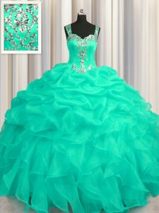 Fitting See Through Zipper Up Organza Sleeveless Floor Length Quinceanera Dress and Appliques and Ruffles